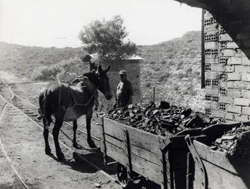 El tren de la mina Flora